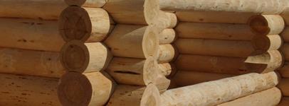 Banja Sauna bauen
